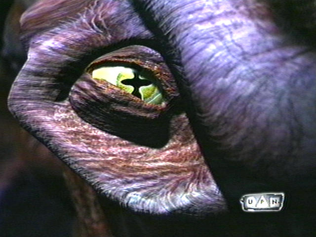 Image of 8472eye.jpg
