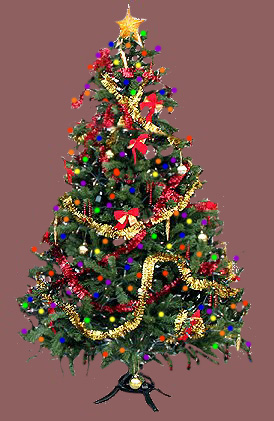 Image of christmastreeup.jpg