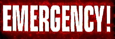 Image of emergencylogo2006red.jpg