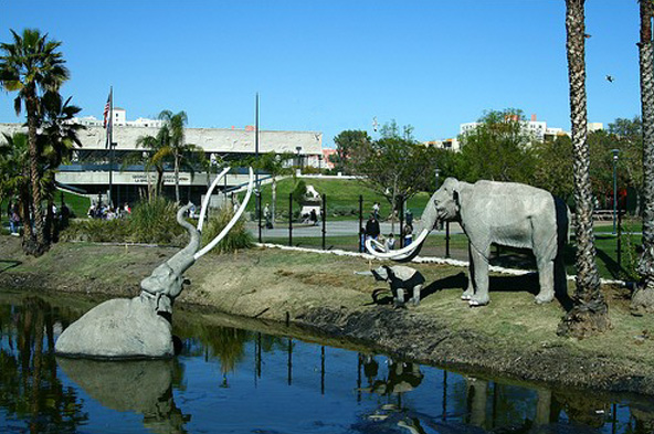 Image of la-brea-tar-pits-address.jpg