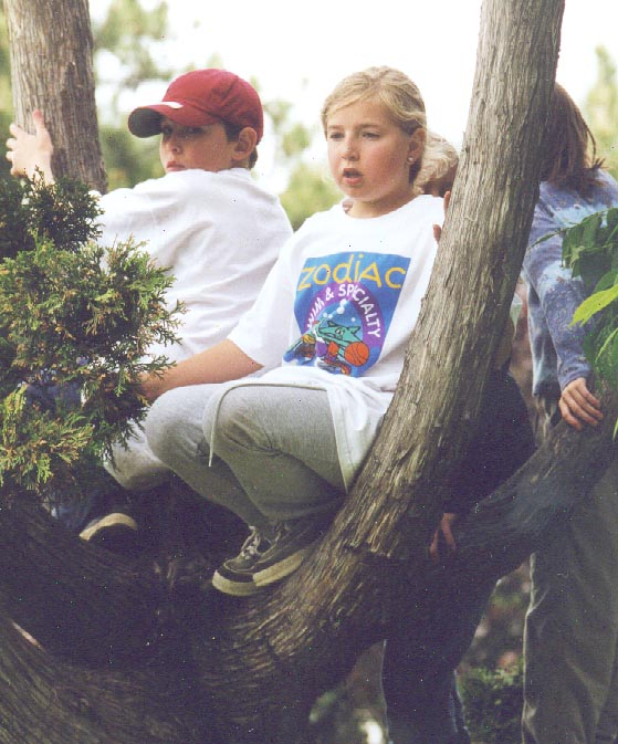 Image of tree-climbers.jpg