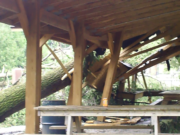 Image of treeporch.jpg